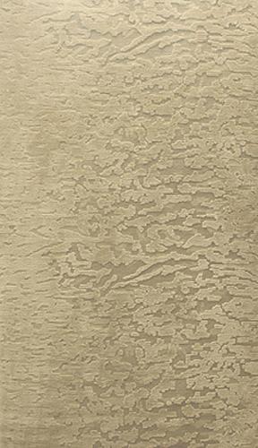 Lichen (paperbark)